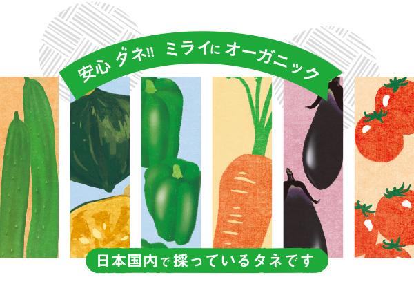 「自然のタネ」オンラインショップ 農薬・化学肥料不使用 国内生産 有機栽培向け
